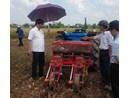 Máy gieo trồng ngô, đậu tương