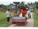 Máy gặt đập liên hợp MGĐ120