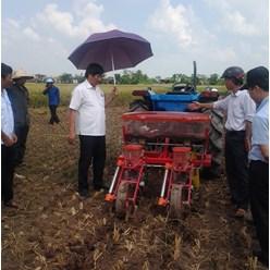 Máy gieo trồng ngô bắp đậu tương