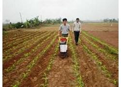 Máy tra hạt, xới cỏ và bón phân 3WG-5