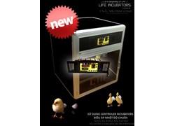 Máy ấp trứng 200 L.IN điều áp LDI-200