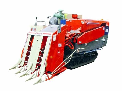 Máy gặt đập liên hợp 4LBZ-150 (1,45m) hinh anh 1
