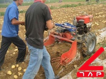 Máy thu hoạch khoai tây hinh anh 1