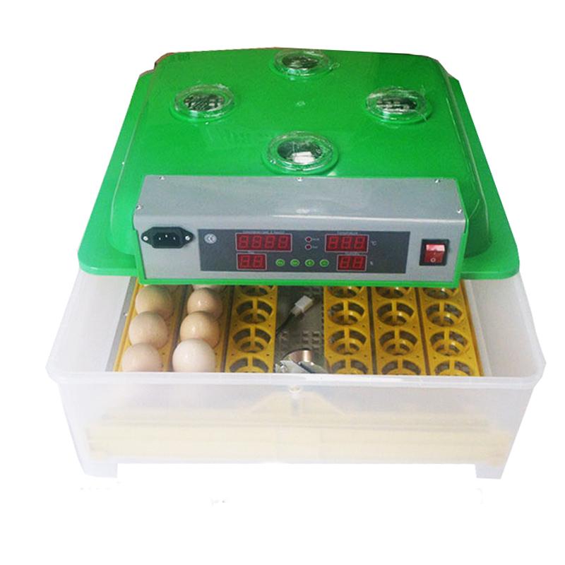 Máy ấp trứng gà mini tự động WQ-48 hinh anh 1