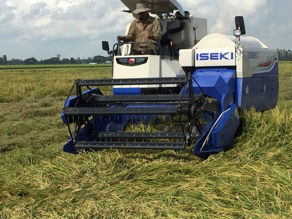 Máy gặt lúa ISEKI HC-80P hinh anh 4
