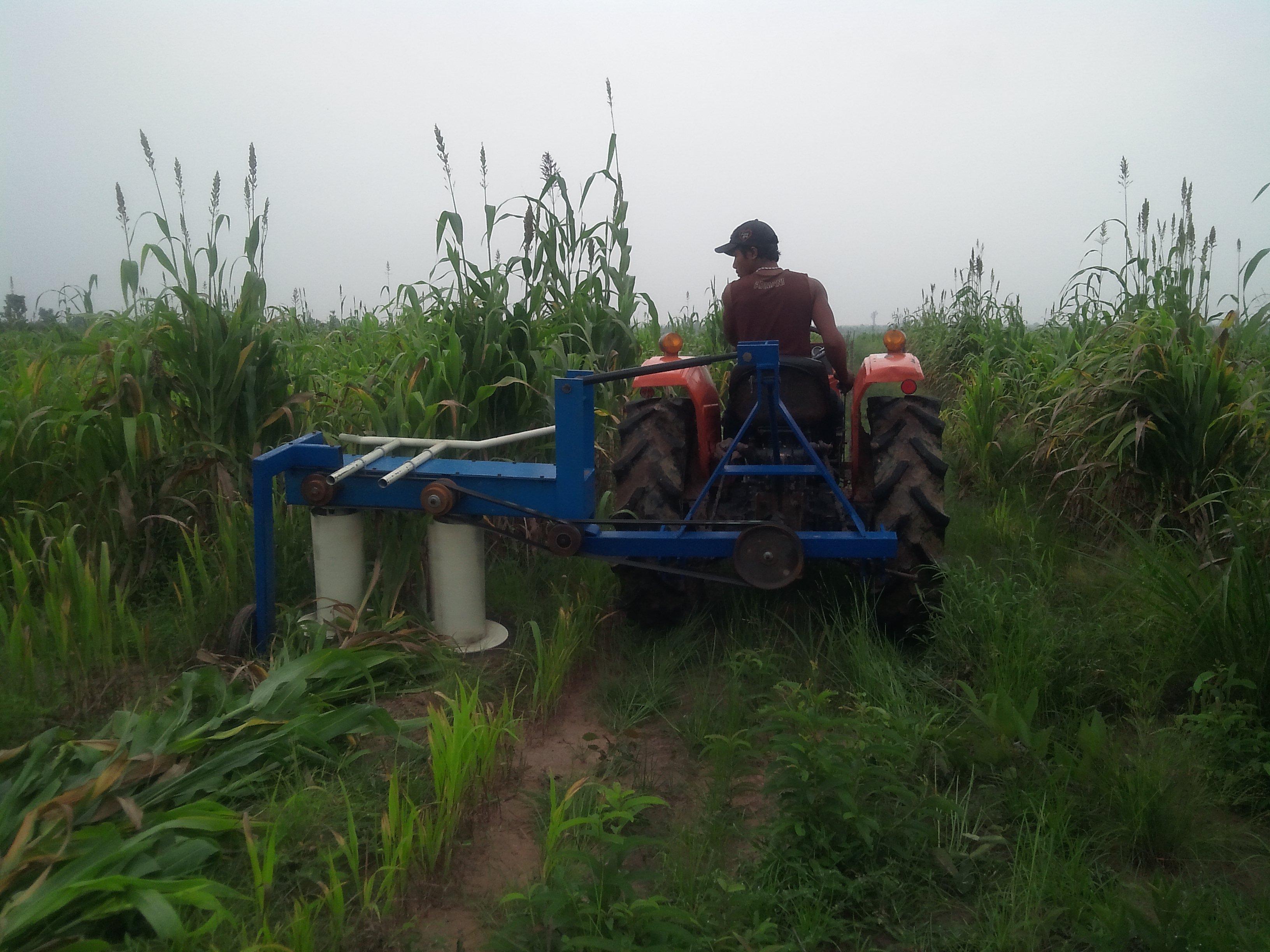 Máy cắt cỏ voi, bắp xếp dãy 8-10ha/ngày hinh anh 3